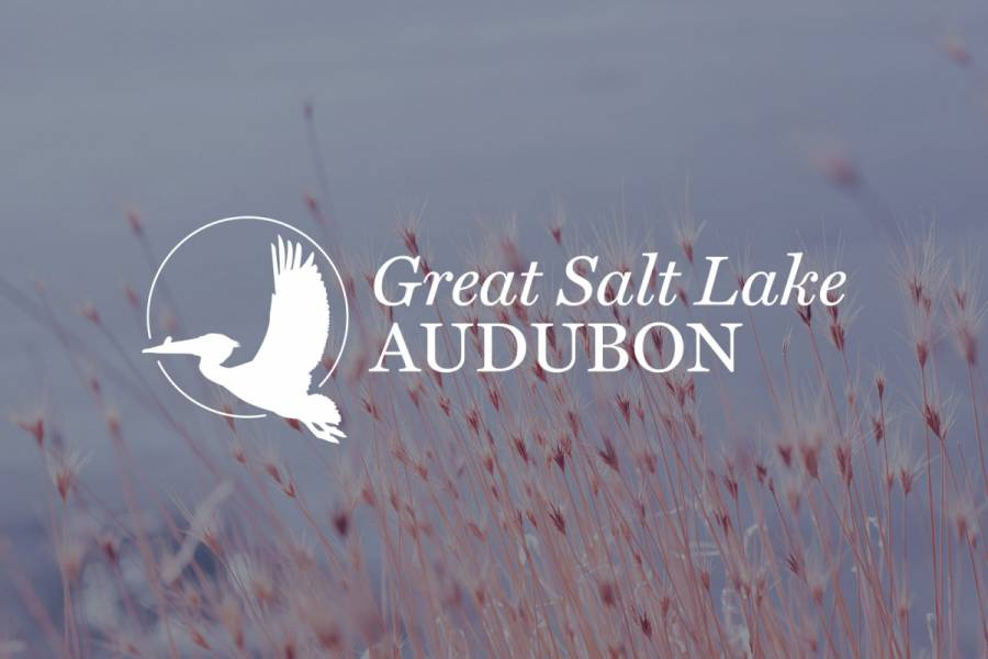 Great Salt Lake Audubon
