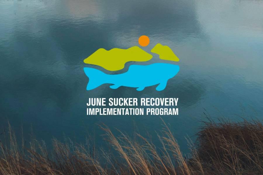 June Sucker Recovery Implementation Program