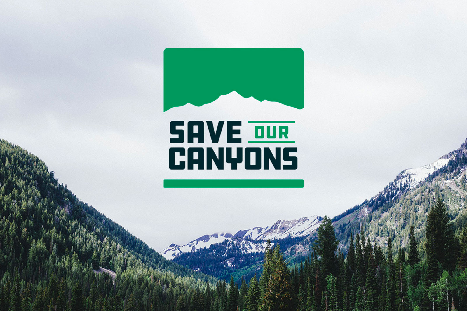 Save Our Canyons