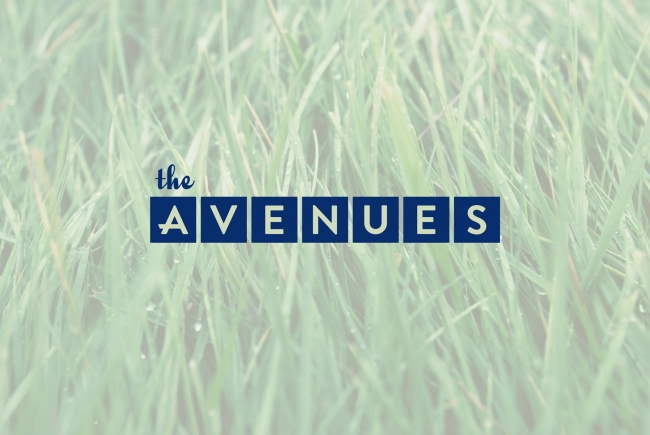 The Avenues: A Neighborhood Makeover