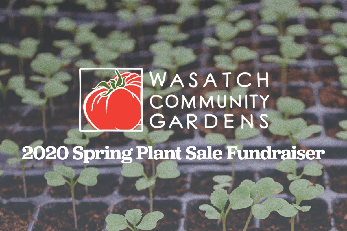Reimagining The Best Little Plant Sale in Utah